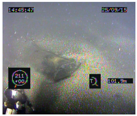 Figure 3. ROV's photo inspection of detected object
